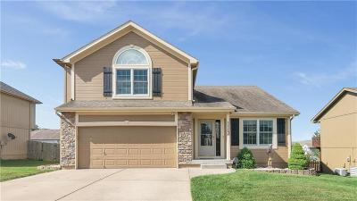 Raymore MO Single Family Home For Sale: $245,000