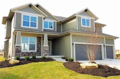 Johnson-KS County Single Family Home For Sale: 24751 W 92nd Street