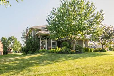 Johnson-KS County Single Family Home For Sale: 5127 W 164th Terrace