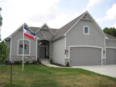 Lee's Summit MO Single Family Home Model: $419,950