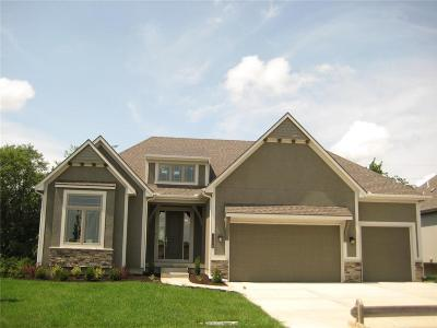 Lee's Summit MO Single Family Home Model: $455,950