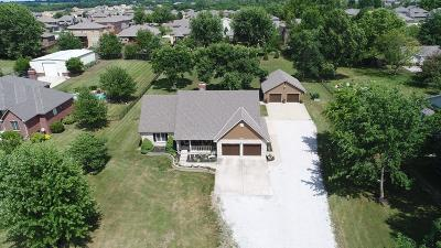 Lee's Summit MO Single Family Home For Sale: $540,000