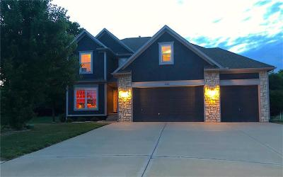 Belton Single Family Home Contingent: 1006 Red Court