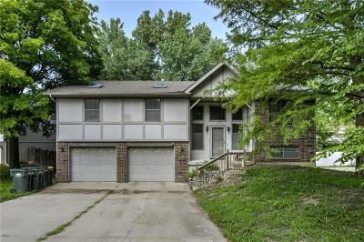 Lansing Single Family Home For Sale: 325 Oak Hill Street