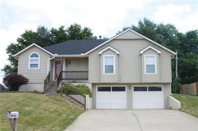 Kansas City Single Family Home For Sale: 11143 Georgia Avenue