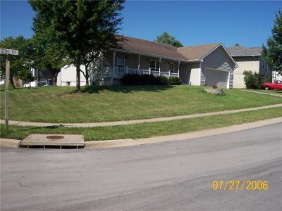 Kearney Single Family Home For Sale: 713 E 12th Street
