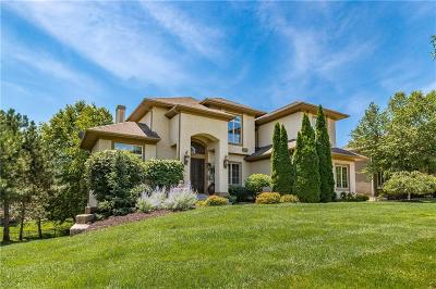 Overland Park Single Family Home For Sale: 5207 W 165th Terrace