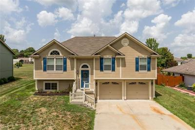 Lafayette County Single Family Home For Sale: 309 E Phillips Street