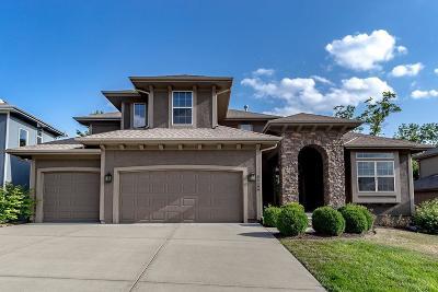 Olathe Single Family Home For Sale: 24199 W 123rd Terrace