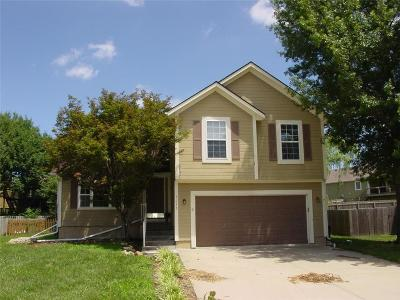Warrensburg MO Single Family Home For Sale: $199,000