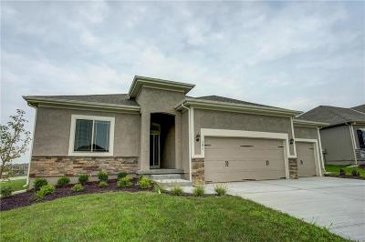 Olathe Single Family Home For Sale: 16857 W 170th Court