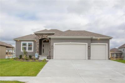 Kearney Single Family Home For Sale: 2117 Foxtail Drive