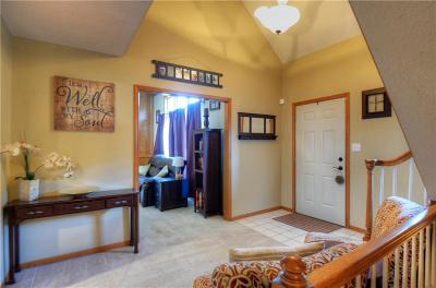 Blue Springs Single Family Home For Sale: 3224 S Black Forest Avenue
