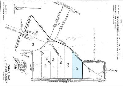 Clay County Residential Lots & Land For Sale: N Randolph - Lot 56 Road