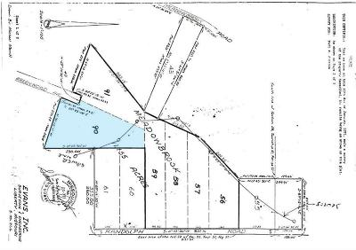 Clay County Residential Lots & Land For Sale: N Randolph - Lot 90 Road