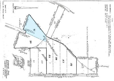 Clay County Residential Lots & Land For Sale: N Randolph - Lot 91 Road