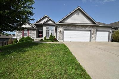 Platte City Single Family Home For Sale: 13820 Cole Trails