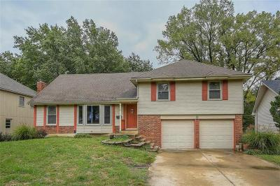 Overland Park Single Family Home For Sale: 9125 Grandview Drive