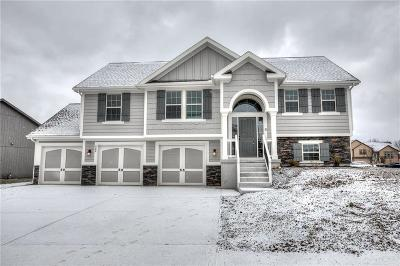 Kearney Single Family Home For Sale: 908 N Cottonwood Street