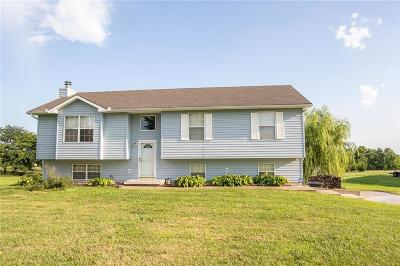 Warrensburg Single Family Home For Sale: 8 SW 365th Road