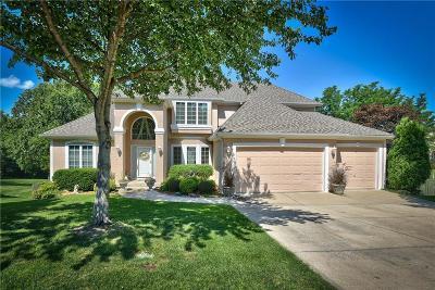 Lee's Summit Single Family Home For Sale: 521 NE Oaks Ridge Drive