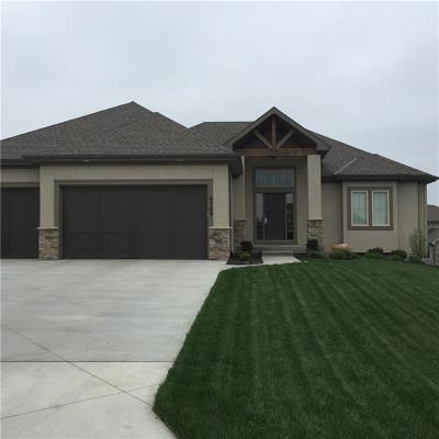 Olathe Single Family Home For Sale: 20548 W 113 Street
