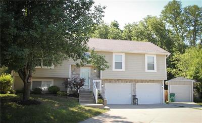 Platte City Single Family Home For Sale: 1725 Todd Street