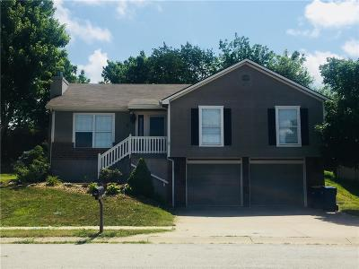 Excelsior Springs Single Family Home For Sale: 609 Patrick Drive
