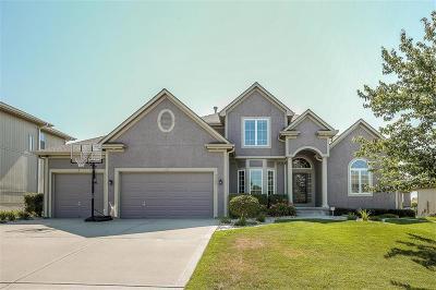Lee's Summit Single Family Home For Sale: 4509 SW Raintree Ridge Drive
