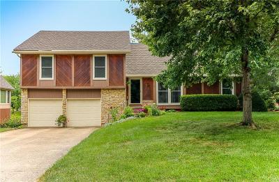 Lee's Summit Single Family Home For Sale: 3513 NE Logwood Circle