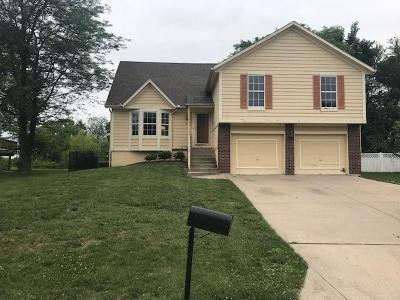 Grandview Single Family Home For Sale: 7012 E 123rd Street