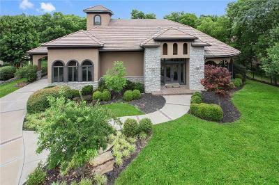 Cass County Single Family Home For Sale: 16854 S Highland Ridge Drive