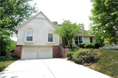 Kansas City Single Family Home For Sale: 733 W 121st Street