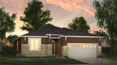 Lenexa Single Family Home For Sale: 8985 Sunray Drive