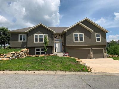 Bonner Springs Single Family Home For Sale: 509 S 138th Street