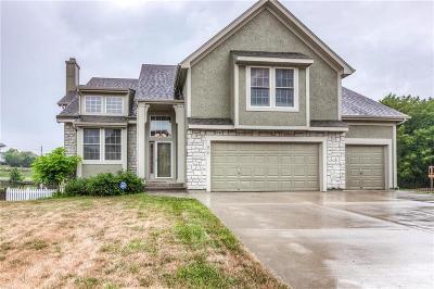 Kansas City Single Family Home For Sale: 9101 NE 97 Street
