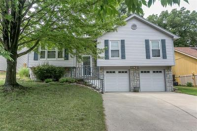 Platte County Single Family Home Show For Backups: 8004 N Everton Avenue