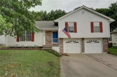 Blue Springs Single Family Home For Sale: 1108 SW Trail Ridge Drive