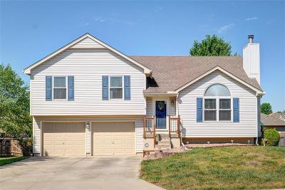 Lee's Summit Single Family Home For Sale: 1216 NE Magnolia Street