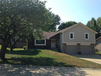 Andrew County Single Family Home For Sale: 6206 N 28th Street Terrace