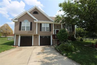 Belton Single Family Home For Sale: 906 Rome Court