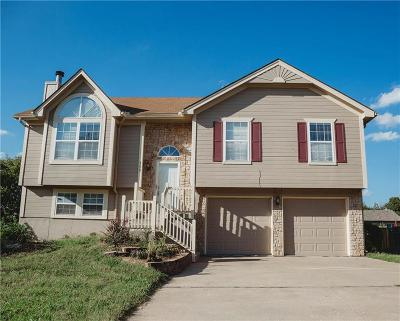 Raymore MO Single Family Home For Sale: $180,000