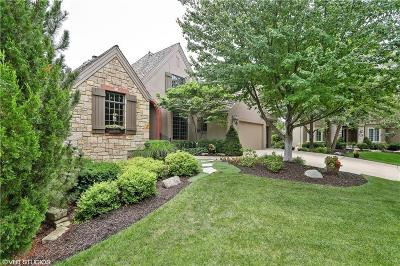 Overland Park Single Family Home For Sale: 11005 W 141st Street