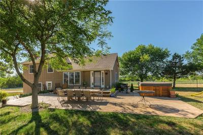 Spring Hill Single Family Home For Sale: 21401 S Renner Road