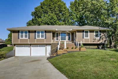Lee's Summit Single Family Home For Sale: 3855 SW Harbor Court