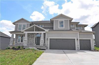 Olathe Single Family Home For Sale: 10741 S Race Street