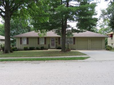 Raytown Single Family Home For Sale: 9609 E 86th Terrace