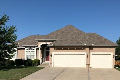 Lee's Summit Single Family Home For Sale: 3904 SW Boulder Drive