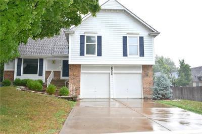 Single Family Home For Sale: 8529 Alden Street