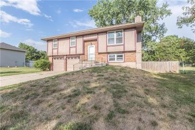 Platte County Single Family Home For Sale: 8409 N Atkins Court